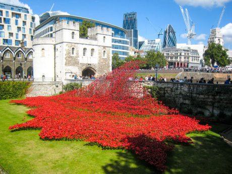 Scozia e Londra 2015 - Torre di Londra