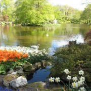 olanda-giardini-annamaria
